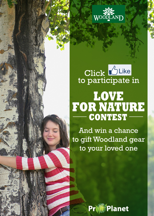 Woodland Love towards nature Contest